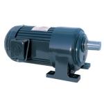 Motor giảm tốc chân đế Dolin 1/8HP-100W tỉ số truyền 5-50