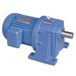 Motor giảm tốc chân đế TungLee 1/8HP 0.1Kw (5-50)