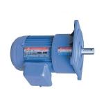 Motor giảm tốc mặt bích TungLee 1/8HP 0.1Kw (60-180)