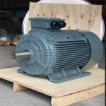motor dien 3 pha chan de sgp 3kw 150x150 - Motor điện 3 pha chân đế SGP 3kw