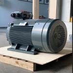 motor 3 pha chan de sgp 40hp 30kw 150x150 - Motor 3 pha chân đế SGP 40HP 30KW