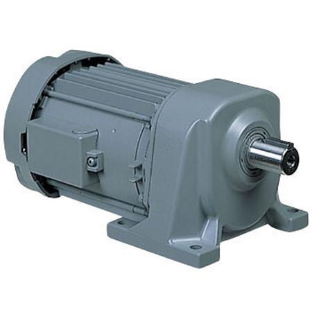 Motor giảm tốc chân đế Hitachi CA019-020-20 (0,2kw 1/20 200V)