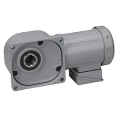 Motor giảm tốc cốt âm Nissei 0.2Kw FS30N30-MM02TNNNN