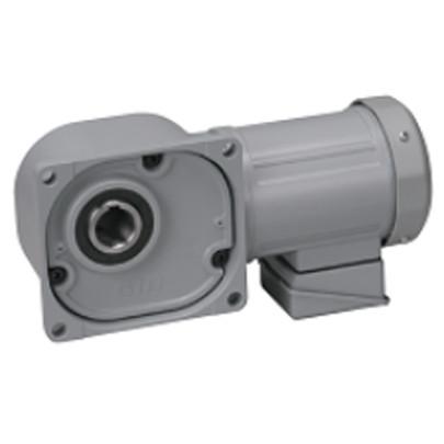 Motor giảm tốc cốt âm Nissei 0.4Kw FS35N30-MM04TNNNN