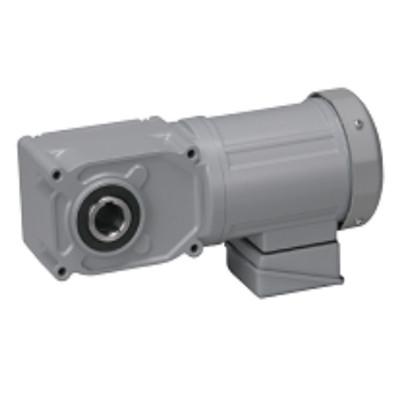 Motor giảm tốc cốt âm Nissei 100W F3S20N5-MM01TNNNN