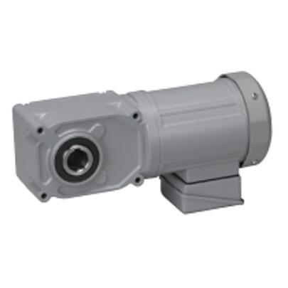 Motor giảm tốc cốt âm Nissei 1HP F3S30N20-MD08TNNTN
