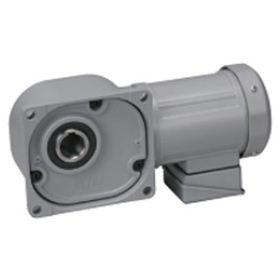 Motor giảm tốc cốt âm Nissei 1HP FS45N15-MD08TNNTN