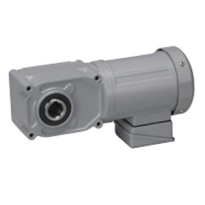 Motor giảm tốc cốt âm Nissei 200W F3S20N10-MM02TNNNN