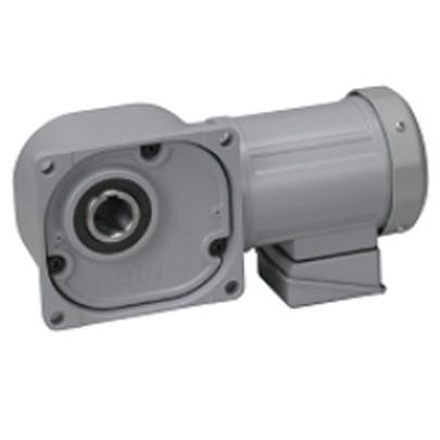 Motor giảm tốc cốt âm Nissei 2HP FS55N20-MD15TNNTN
