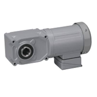Motor giảm tốc cốt âm Nissei 3HP F3S45N30-MD22TNNTN