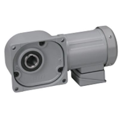 Motor giảm tốc cốt âm Nissei 3HP FS55N10-MD22TNNTN