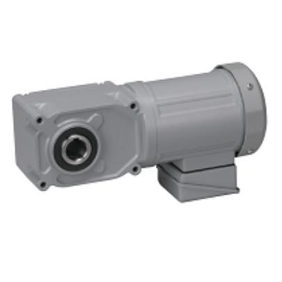 Motor giảm tốc cốt âm Nissei 400W F3S25N15-MM04TNNNN